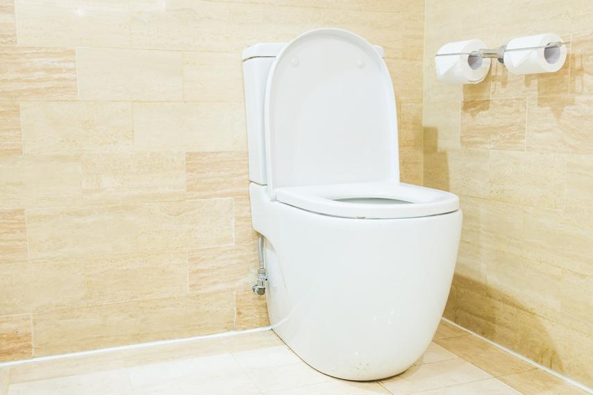 Réparation ou installation de WC
